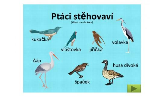 Sborovna.cz - portál pro učitele